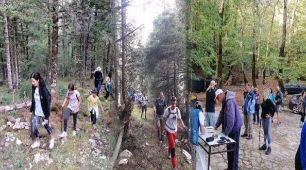 Ορεινή Ναυπακτία: Μεγάλη συμμετοχή στην πεζοπορία από Πόδο μέχρι Τσακαλάκι (Photos)