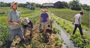 Την Τετάρτη το 70% της «Βασικής Ενίσχυσης» σε 540.000 αγρότες