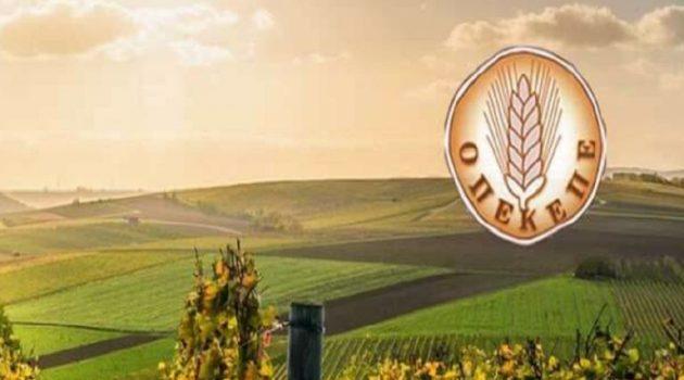 Ο.Π.Ε.Κ.Ε.Π.Ε.: Νέα πληρωμή 7,38 εκατ. ευρώ