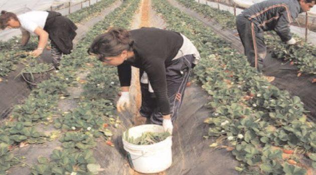Αγρίνιο: Αλλοδαπός εργάτης γης θετικός στον ιό