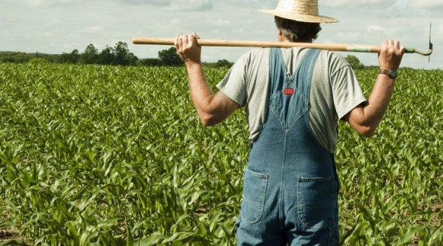 Αναστολή μαθημάτων ΕΠΑ.Σ. και προγραμμάτων κατάρτισης νέων αγροτών