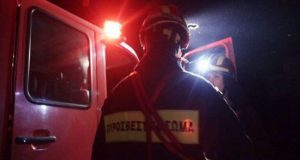 Αγρίνιο: Κινητοποίηση ανδρών της Πυροσβεστικής Υπηρεσίας για φωτιά σε φοίνικα