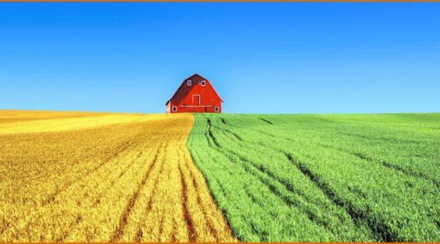Οι αρχές της βιολογικής γεωργίας