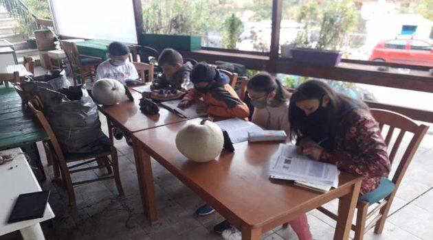 Τηλεκπαίδευση: Μάθημα με μπουφάν και κινητό στην αυλή καφενείου σε χωριό της Ηλείας