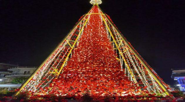 Φωταγώγηση του Χριστουγεννιάτικου δένδρου στην Ι.Π. Μεσολογγίου(Photos)