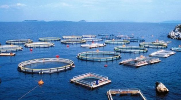 Μεσολόγγι: Τα παράδοξα των βάσεων – 13 θα γίνουν αλιείς και 150 θα τους φυλάνε!