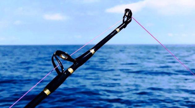Άρση απαγόρευσης για ψάρεμα και κυνήγι – Οι προϋποθέσεις