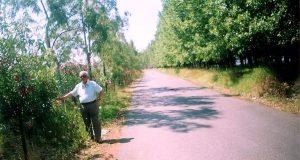 Messolonghi Bylocals: «Το Αλσύλλιο στη λιμνοθάλασσα που νίκησε το σκουπιδότοπο»…