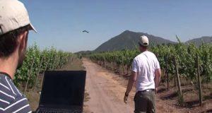 Η συμβολή των ΣμηΕΑ (drones) στην αναβάθμιση του αγροτικού τομέα