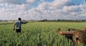 Ένωση Αγρινίου: Από την Τρίτη η παραλαβή αιτήσεων Φ.Π.Α. αγροτών