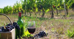 Παράταση αιτήσεων επιστροφής ή διαγραφής Ειδικού Φόρου Κατανάλωσης κρασιού