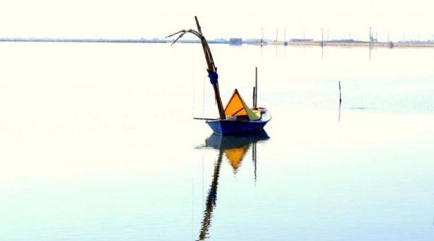 Σταφνοκάρι στη Λιμνοθάλασσα του Μεσολογγίου (Photo)