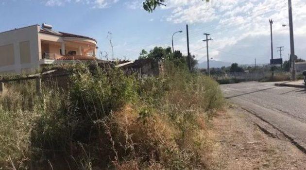 Αγρίνιο: Μεγάλη παρέμβαση του Δήμου στον Άγιο ΙωάννηΡηγανά