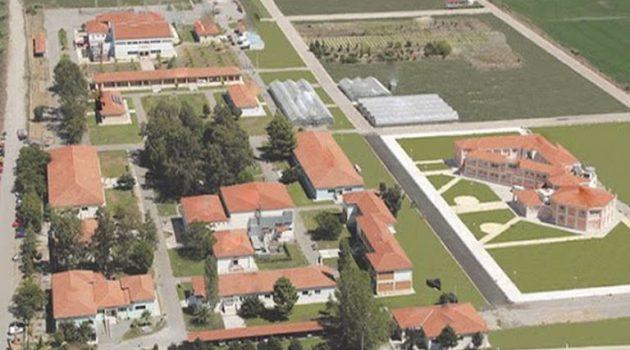 Ολοκληρωμένη πρόταση του Πανεπιστημίου Πατρών – Η Γεωπονική Σχολή στην Αιτωλοακαρνανία