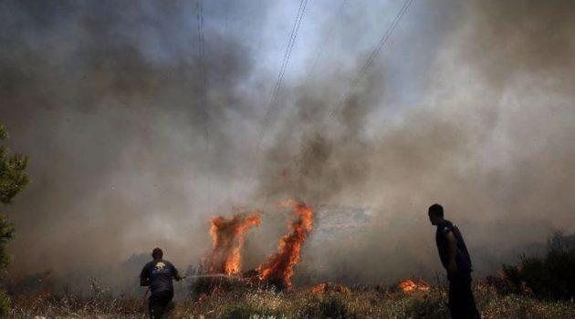 Παλαιομάνινα Αιτ/νίας: 20 στρέμματα δασικής έκτασης έγιναν στάχτη