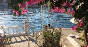 Το πρώτο ελληνικό νησί με covid free σφραγίδα που φέτος…