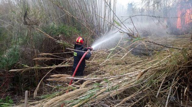 Κυψέλη: Φωτιά σε καλάμια κινητοποίησε την Πυροσβεστική Υπηρεσία Αγρινίου