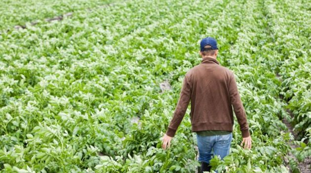 Ένωση Αγρινίου – Νέοι Αγρότες: Ο νέος πίνακας με τη βαθμολογία