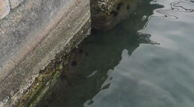 Ναύπακτος: Σημαντική υποχώρηση της θάλασσας (Video)