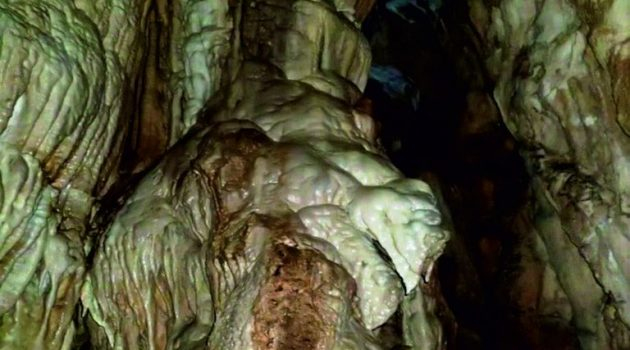 K. Μπακολίτσας: Ένα σημαντικό μνημείο της Αιτωλοακαρνάνικης φύσης (Photos)