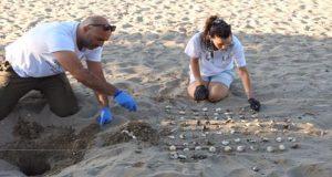 Σε εθελοντισμό καλεί ο Φορέας Διαχείρισης Λιμνοθάλασσας