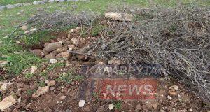 Αχαΐα: Αρχαιοκάπηλοι «χτύπησαν» τον Αρχαίο Κλείτορα