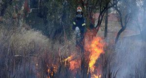 Φωτιές σε Ηλεία και Κορινθία