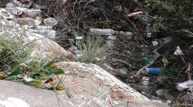 Αγρίνιο – Άγιος Χριστόφορος: Περισυλλογή απορριμμάτων στο Δασύλλιο την Κυριακή (Photo)