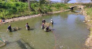 Μεταφορά ψαριών από την Λίμνη Βουλκαριά στη Λίμνη Παμβώτιδα των…