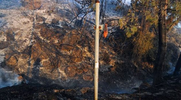Αρχηγός Πυροσβεστικής: «Σε ύφεση η πυρκαγιά στο Σχίνο Κορινθίας – Ζημιές σε σπίτια»