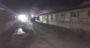 Μ. Χώρα Αγρινίου: Πυρκαγιά σε εγκαταστάσεις χοιροστασίου