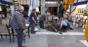 Ο Δήμος Αγρινίου αντικατέστησε τα δέντρα που είχαν καταστραφεί (Photos)