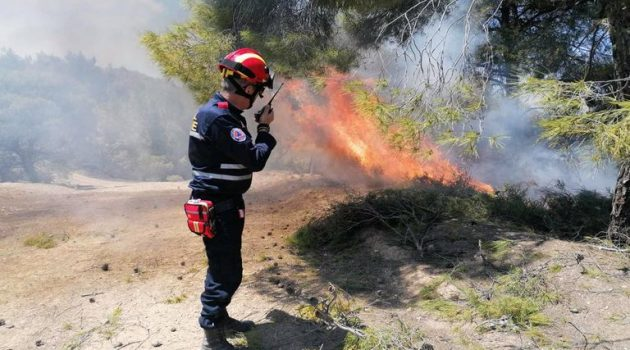 H Ε.Ο.Ε.Δ. Ι.Π. Μεσολογγίου στη μεγάλη πυρκαγιά της Κορινθίας (Photos)