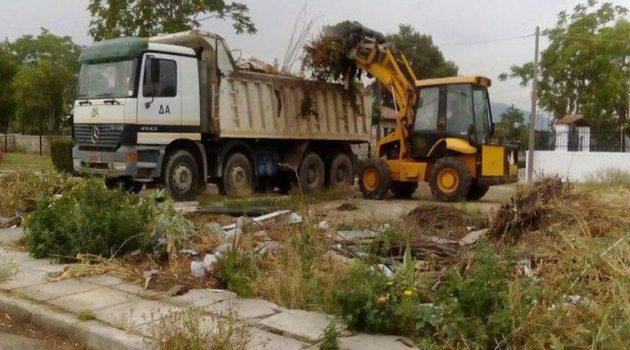 Ε.Ο. Αγρινίου – Θέρμου: Πραγματοποίηση εργασιών πρασίνου από Δευτέρα
