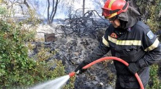 Από αμέλεια η πυρκαγιά στα Γεράνεια Όρη – Μάχη για τρίτο 24ωρο (Photos)