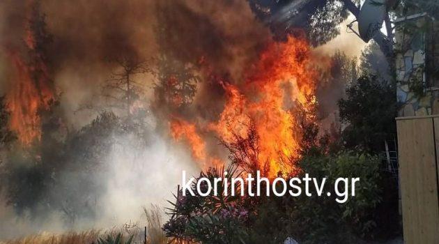 Επικίνδυνη η φωτιά στα Ίσθμια Κορινθίας – Εκκενώθηκε οικισμός (Videos – Photos)