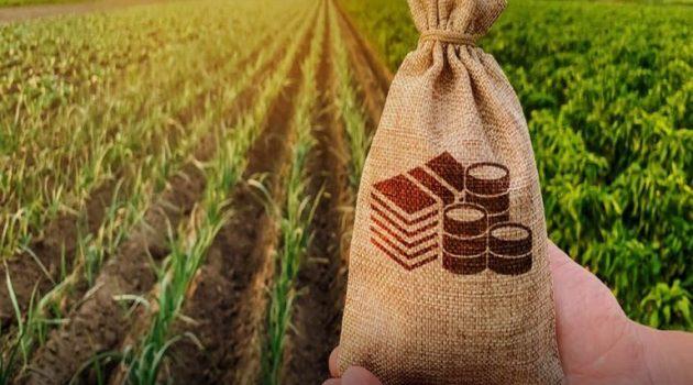 Ταμείο Εγγυήσεων Αγροτικής Ανάπτυξης: Τί είναι και πώς θα ωφεληθείτε