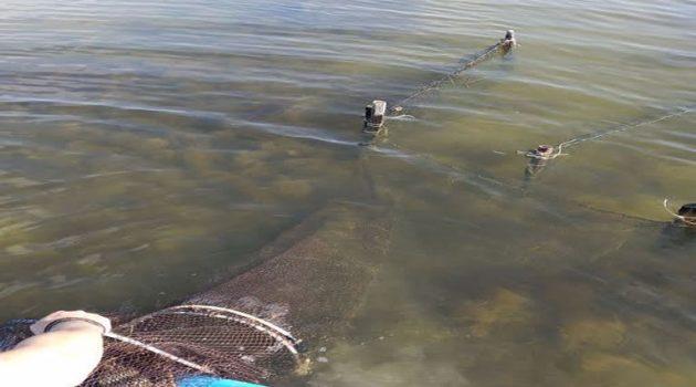 Λιμενικό: Παράνομα αλιευτικά εντοπίστηκαν στη Λιμνοθάλασσα Αιτωλικού (Photos)