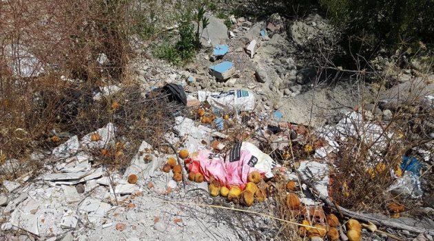 Τα μπάζα «επέστρεψαν» δίπλα στον Αχελώο (Photos)