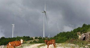 Μεγάλη οικονομική συνεισφορά των αιολικών πάρκων στους οικιακούς καταναλωτές ρεύματος