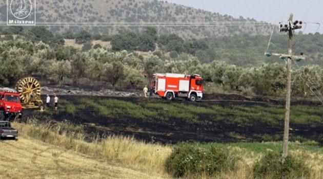 Πυρκαγιά ξέσπασε στον Άγιο Στέφανο Ξηρομέρου (Video)