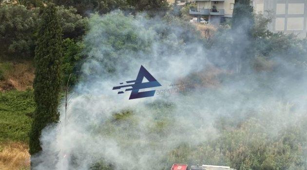 Αγρίνιο: Κεραυνός προκάλεσε φωτιά σε δέντρο (Video – Photos)