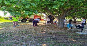 Δράση καθαρισμού στην Αγία Τριάδα του Μαυρίκα από την «Ακτίνα…