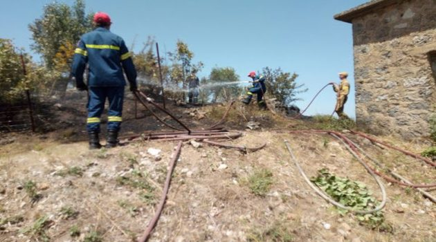 Άμεση κινητοποίηση της Πυροσβεστικής για φωτιά στην Κωνωπίνα (Photos)