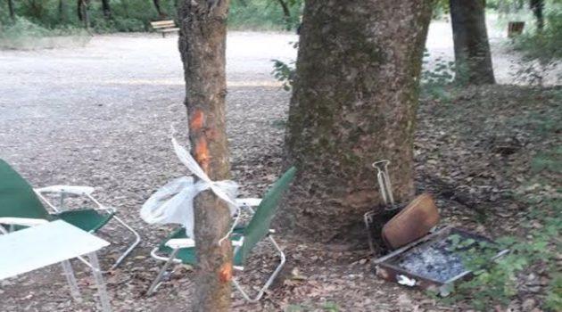 Εικόνες καταστροφής στο Δημοτικό Πάρκο Αγρινίου (Photos)