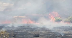 Φωτιά στον Γαλατά Ναυπακτίας κινητοποίησε την Πυροσβεστική (Photos)