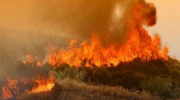 Πάτρα: Φωτιά σε δασική έκταση στην περιοχή Κάτω Μαυρίκι Αιγιαλείας