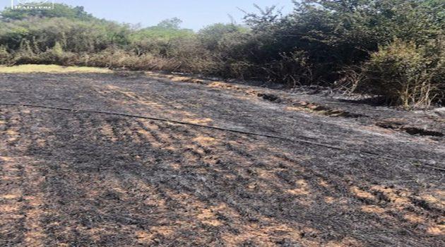 Λήξη συναγερμού στην Κατούνα – Υπό έλεγχο η φωτιά (Photos)