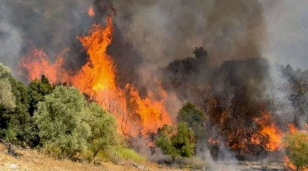Πυρκαγιά στη Χίο – Εκκενώθηκε οικισμός