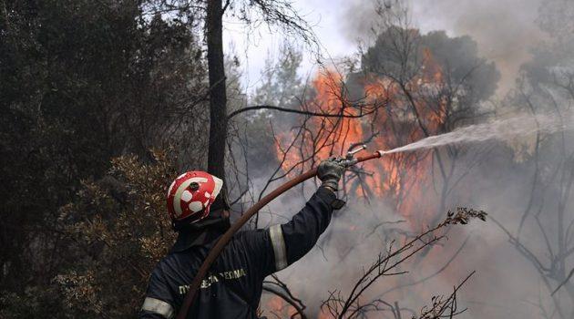 Ξηρόμερο: Η φωτιά στον Άγιο Στέφανο έκαψε ενάμιση στρέμμα χορτολιβαδικής έκτασης (Photos)